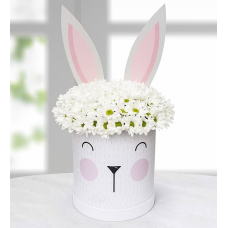 Sevimli Tavşan Kutuda Beyaz Papatya Aranjmanı